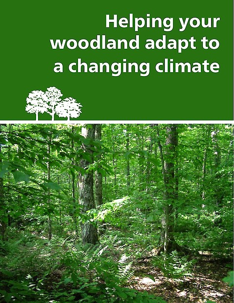 Helping your woodland adapt to a changing climate (Page 1)