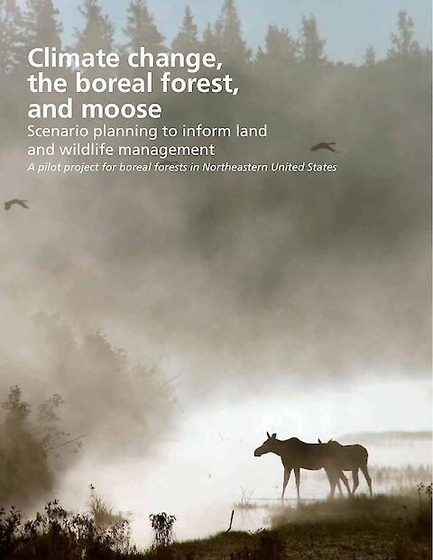 Climate change, the boreal forest, and moose: Scenario planning to inform land and wildlife management (Page 1)