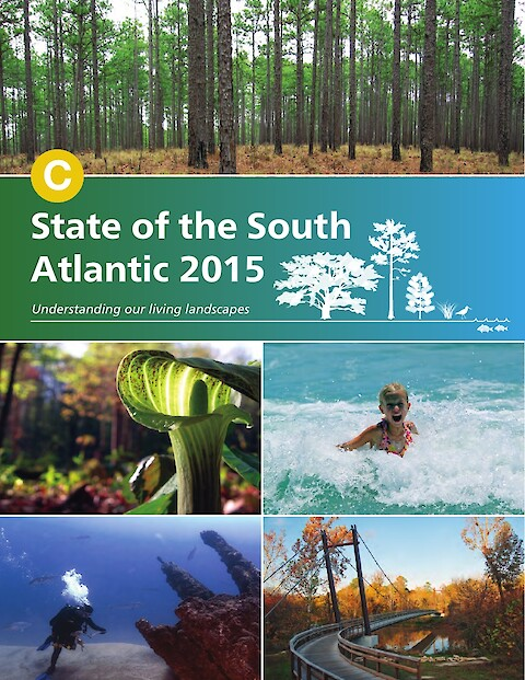 State of the South Atlantic 2015 (Page 1)