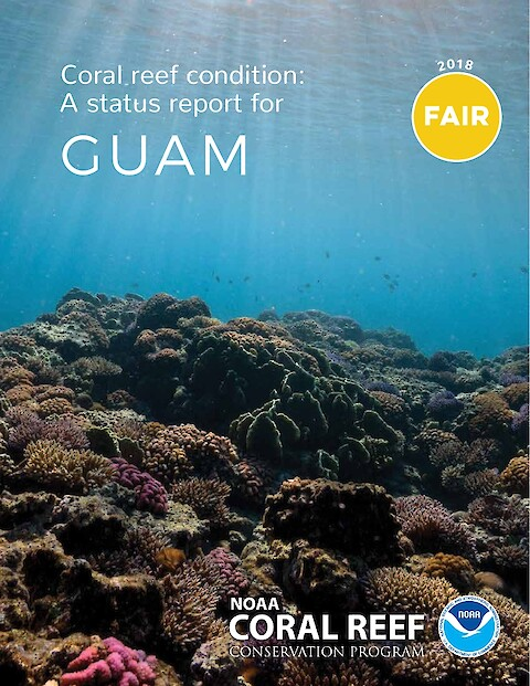 Coral reef condition: A status report for Guam (Page 1)