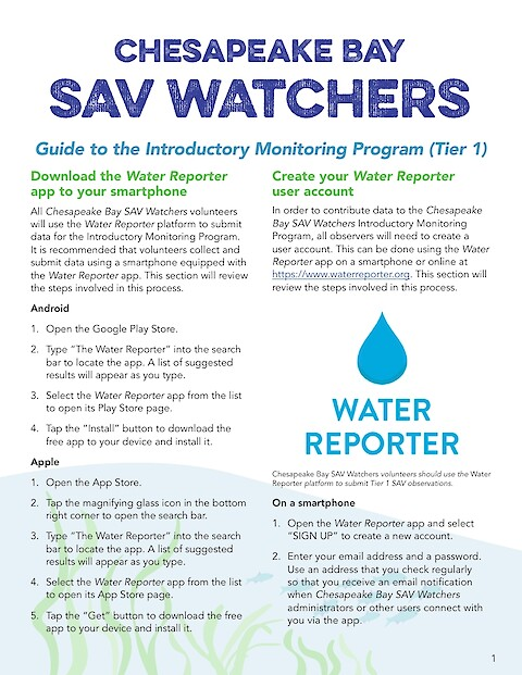 Chesapeake Bay SAV Watchers - Guide to the Introductory Monitoring Program (Tier 1) (Page 1)