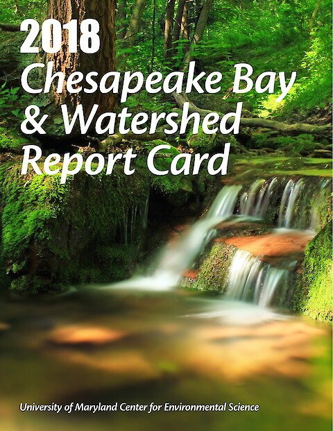 2018 Chesapeake Bay & Watershed Report Card (Page 1)