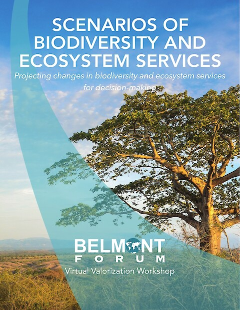 Scenarios of Biodiversity and Ecosystem Services (Page 1)