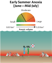 Summer dissolved oxygen dial and diagram