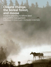 Climate change, boreal forest, and the moose.