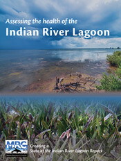 Assessing the health of the Indian River Lagoon framework document
