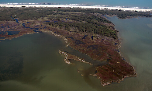 Marshes, ditches, and seagrass behind Assateague Island in Chincoteague Bay.