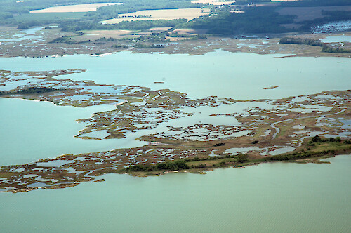 Mills Island in Chincoteague Bay, a rapidly-disappearing, eroding marsh island