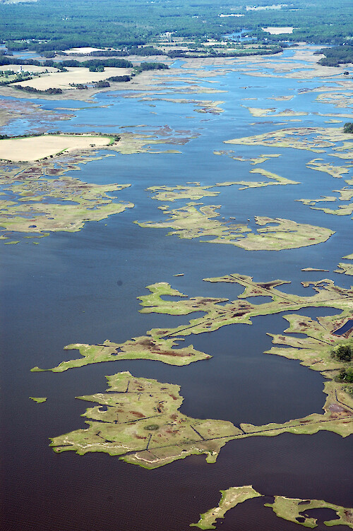 Looking north along Newport Bay, with its many eroding marsh islands and small tributaries