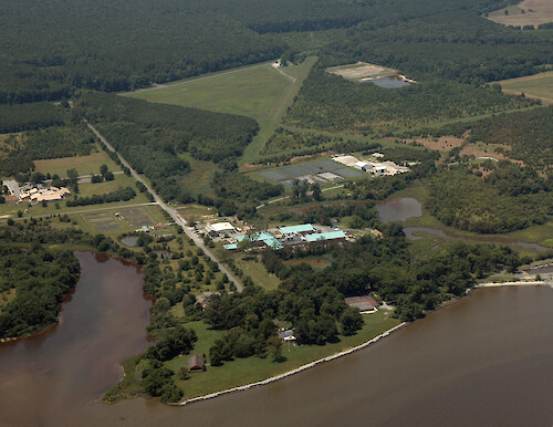 Aerial view of the Horn Point Laboratory campus on the Choptank River