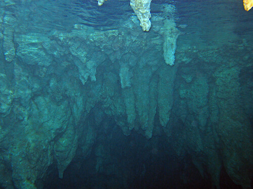 Underwater view of limestone stalactites in the Chandelier Cave in Palau.
