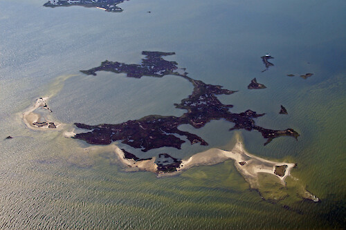Parkers Island at the mouth of Matchotank Creek on the eastern shore of Virginia