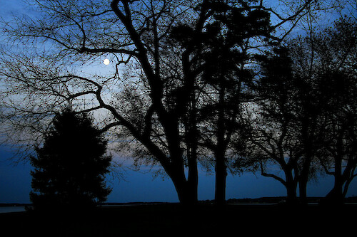 Moonrise over the Choptank River at Horn Point Laboratory, Cambridge