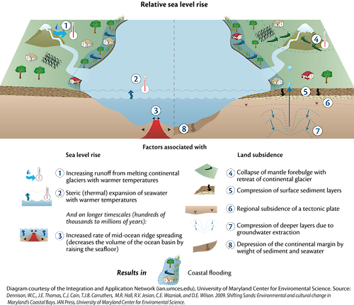 Conceptual diagram illustrating the universal causes and effects of sea-level rise.