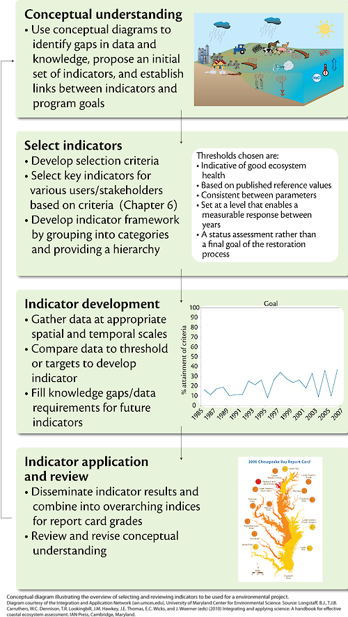 Conceptual diagram illustrating the general overview of selecting and reviewing ecological indicators in a environmental project.