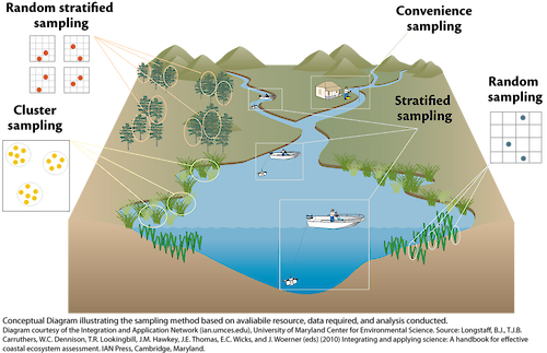 Conceptual diagram illustrating how sampling is to be conducted based on available resources, data needed, and analyses conducted.