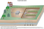 conceptual diagram illustrating a typical residential septic system.