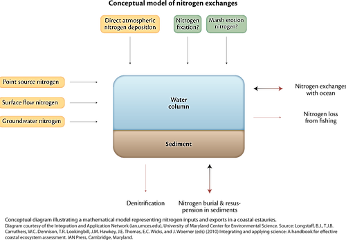 Conceptual diagram illustrating a mathematical model which represents nitrogen inputs and exports in coastal bays.