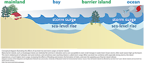 Conceptual diagram illustrating the effects of sea-level rise and storm surges on barrier islands. When sea-level rise combines with strong storms, barrier islands experience high storm surges, which increases the effects of flooding and erosion. Diagram from /link/tos_barrier_learn