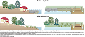 Conceptual diagram illustrating what a waterfront owner can do to protect their property from climate change. Existing structures can be elevated in low-lying areas, and eco-friendly living shorelines can be implemented, to lessen climate change effects like flooding. Diagram from /link/tos_barrier_trends