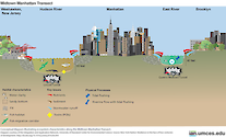 Conceptual diagram illustrating ecosystem characteristics along the Midtown Manhattan Transect. Source: New York Harbor: Resilience in the face of four centuries of development. http://dx.doi.org/10.1016/j.rsma.2016.06.004