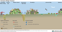 Conceptual diagram illustrating ecosystem characteristics along the Verrazano Bridge Transect. Source: New York Harbor: Resilience in the face of four centuries of development. http://dx.doi.org/10.1016/j.rsma.2016.06.004
