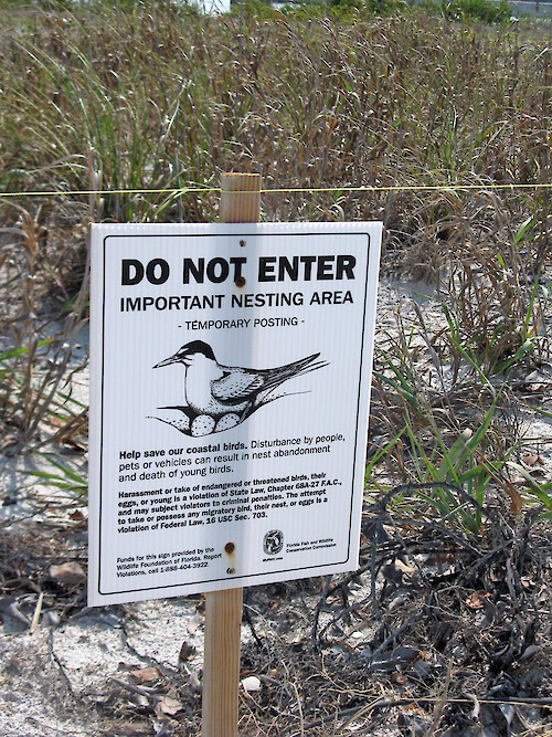 Sign warning against pets, people and vehicles in the area of coastal bird nesting.
