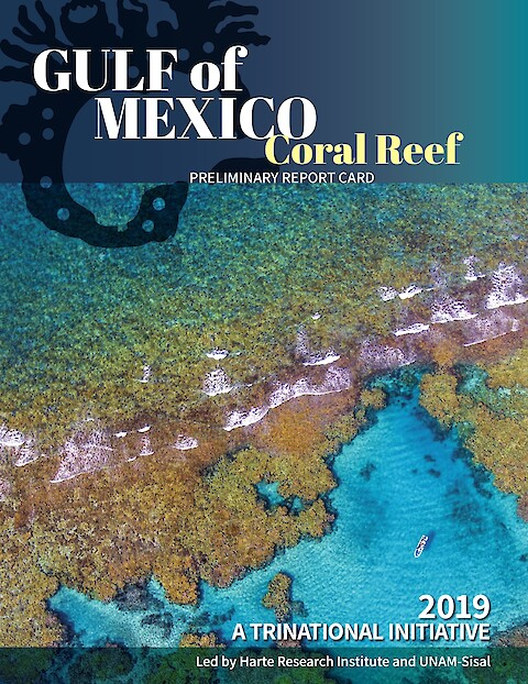 2019 Gulf of Mexico Coral Reef Preliminary Report Card (Page 1)