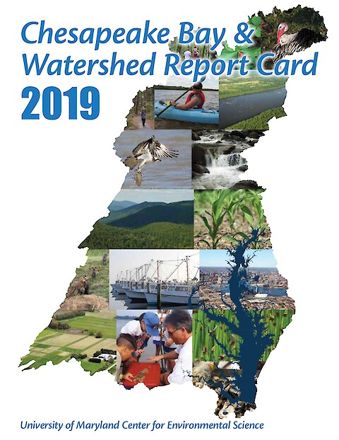 2019 Chesapeake Bay & Watershed Report Card (Page 1)