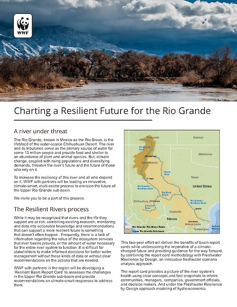 Charting a Resilient Future for the Rio Grande (Page 1)