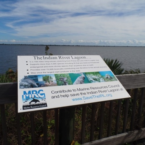 The boardwalk in front of the Lagoon House has a fantastic view of the Indian River Lagoon. Photo by Caroline Donovan.