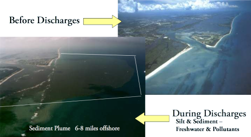 St. Lucie Inlet Near Shore Reef: Before and After Discharges